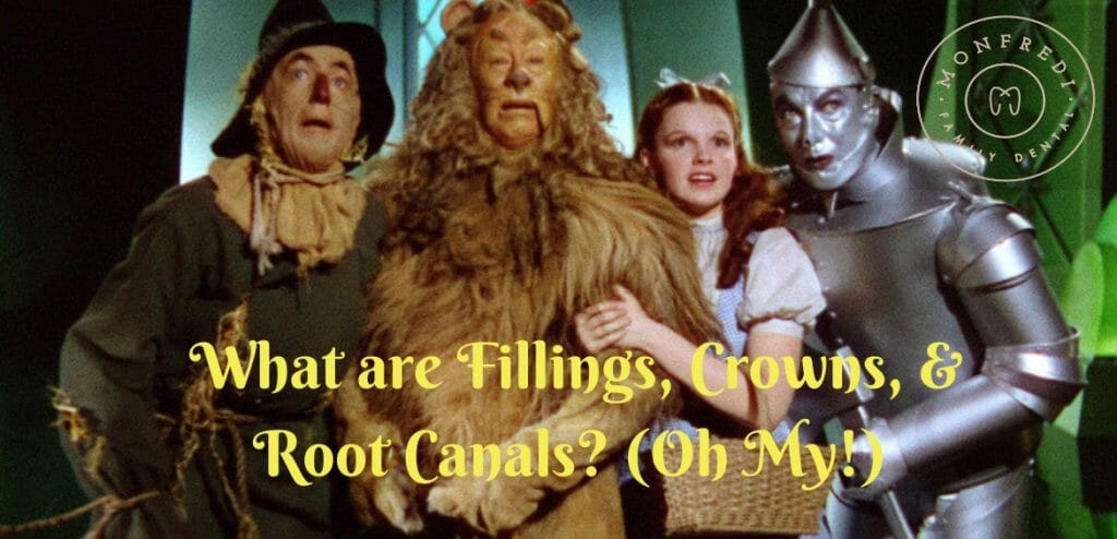What are Fillings, Crowns, and Root Canals?!? (Oh My)